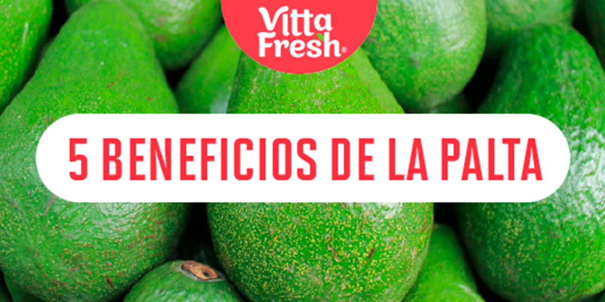 Paltaper: 5 benefits of avocado you didn't know